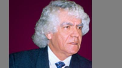 خالد محي الدين البرادعي